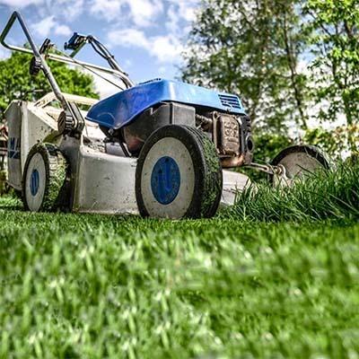 Lawn & Garden thumbnail