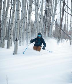Sunlight Skier
