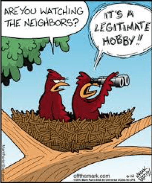 pet food & supplies bird watching cartoon