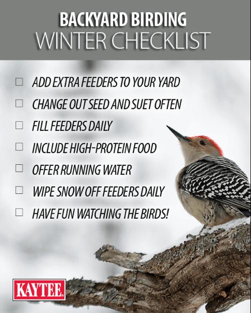 birding winter checklist