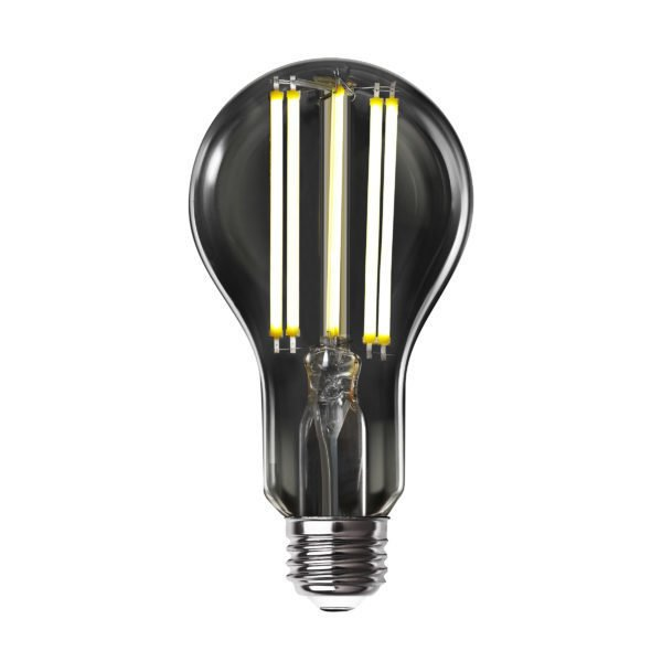 edison bulb LED from Feit