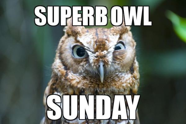 Grammar Matters, Even on Superb Owl Sunday thumbnail