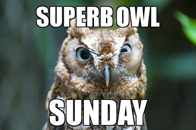 Grammar Matters, Even on Superb Owl Sunday thumbnail