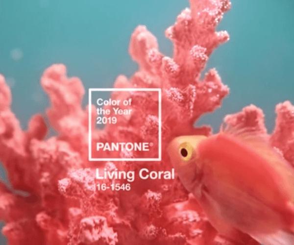Pantone Coral