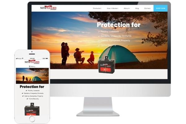 A Summer of Showcaseable Websites thumbnail