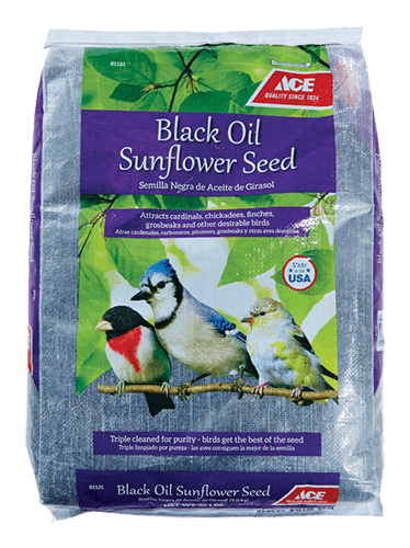 Black Oil Sunflower Seed thumbnail