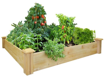 Great Deals on Cedar Raised Garden Beds thumbnail