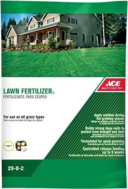 Florida Lawn Fertilizer