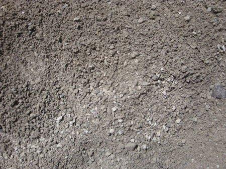 Stone Dust thumbnail