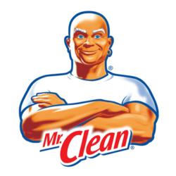 mr-clean- Bozeman, Montana