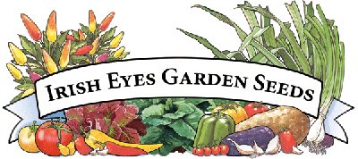 Irish Eyes Garden Seeds thumbnail