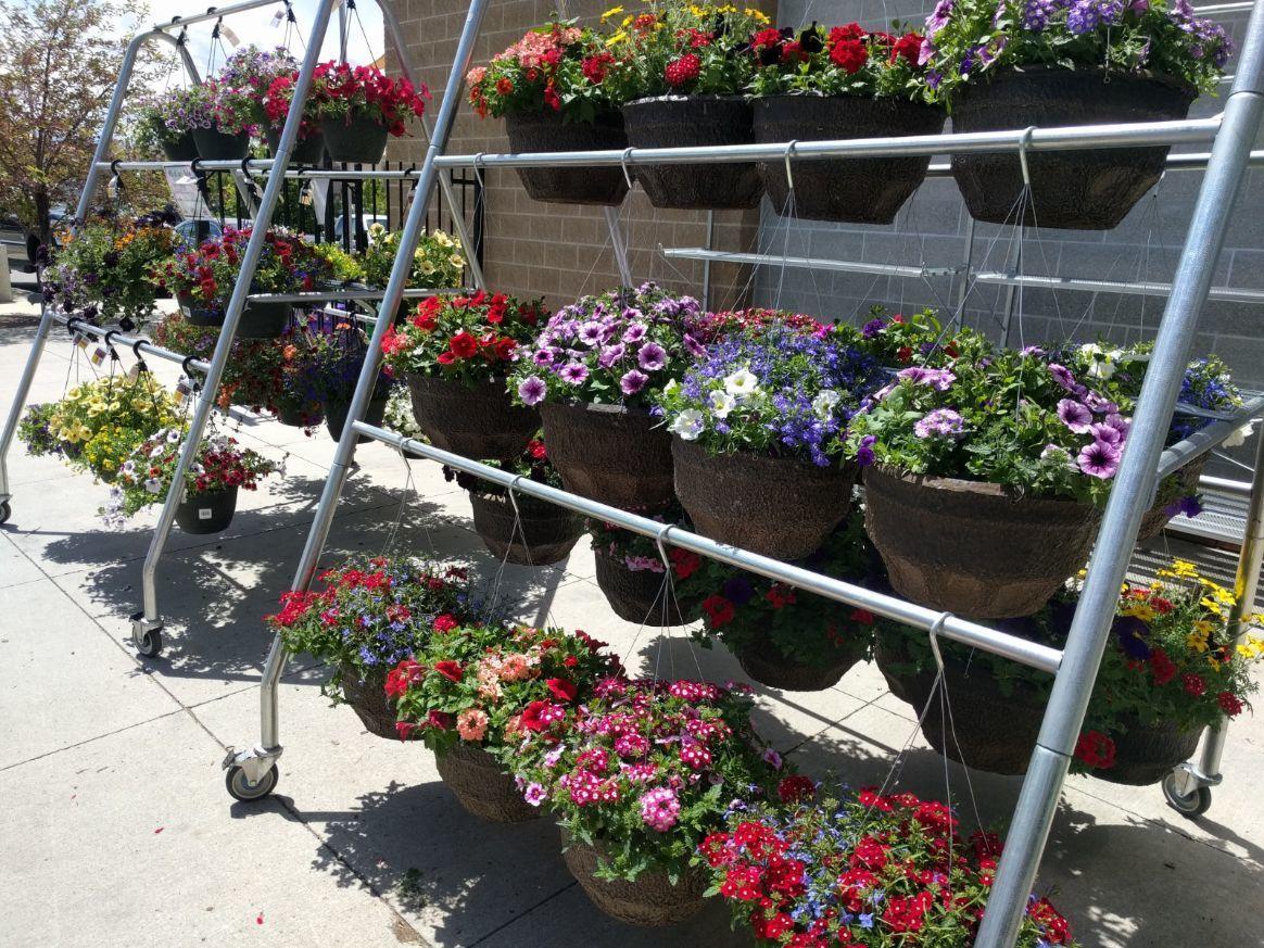 Garden Center Bozeman Montana
