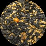 Seed Mountain mix Bozeman Montana