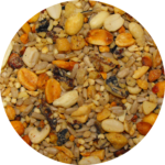 patio mix of seeds Bozeman Montana