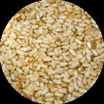 Bozeman Montana safflower seeds for sale
