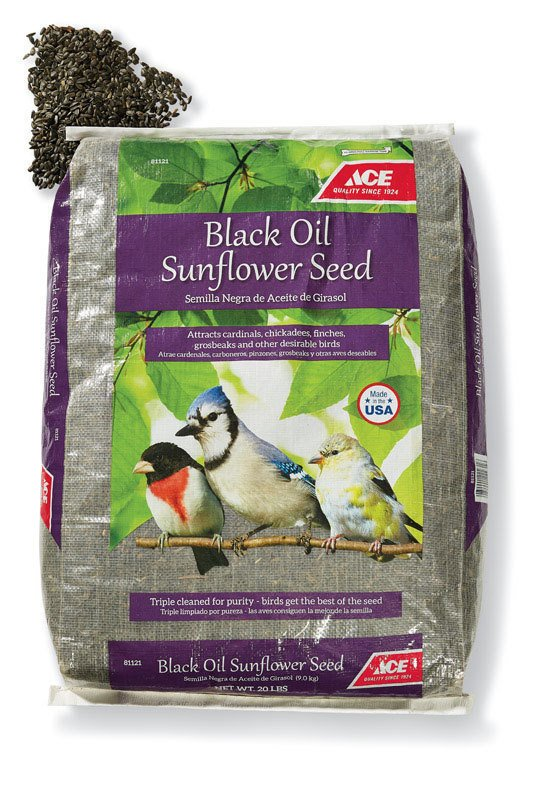 Ace Black Oil Sunflower Seed thumbnail