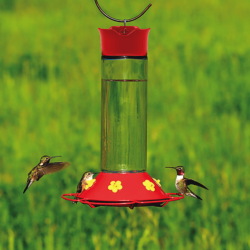perky pet hummingbird feeder Bozeman Montana