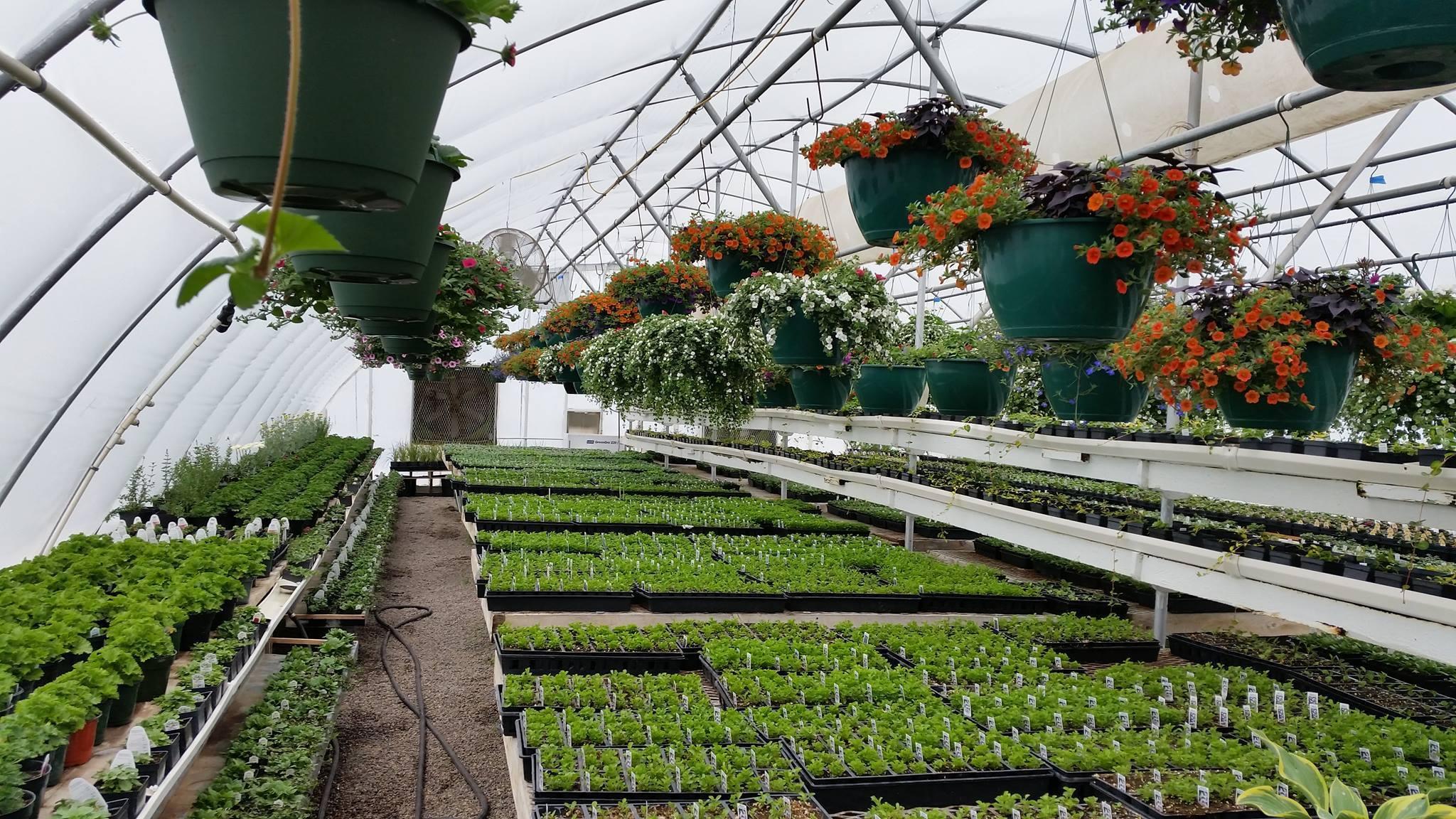 garden for sale Bozeman Montana