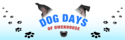 Dog Days Of Owenhouse - Event Image