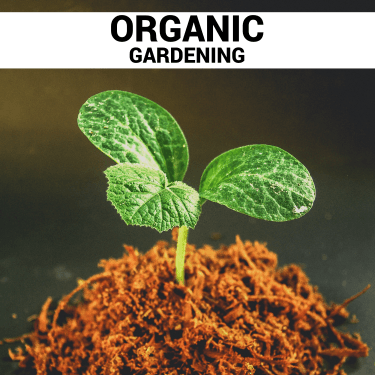 Organic Gardening thumbnail