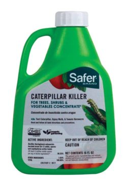 safer brand caterpillar killer bozeman montana