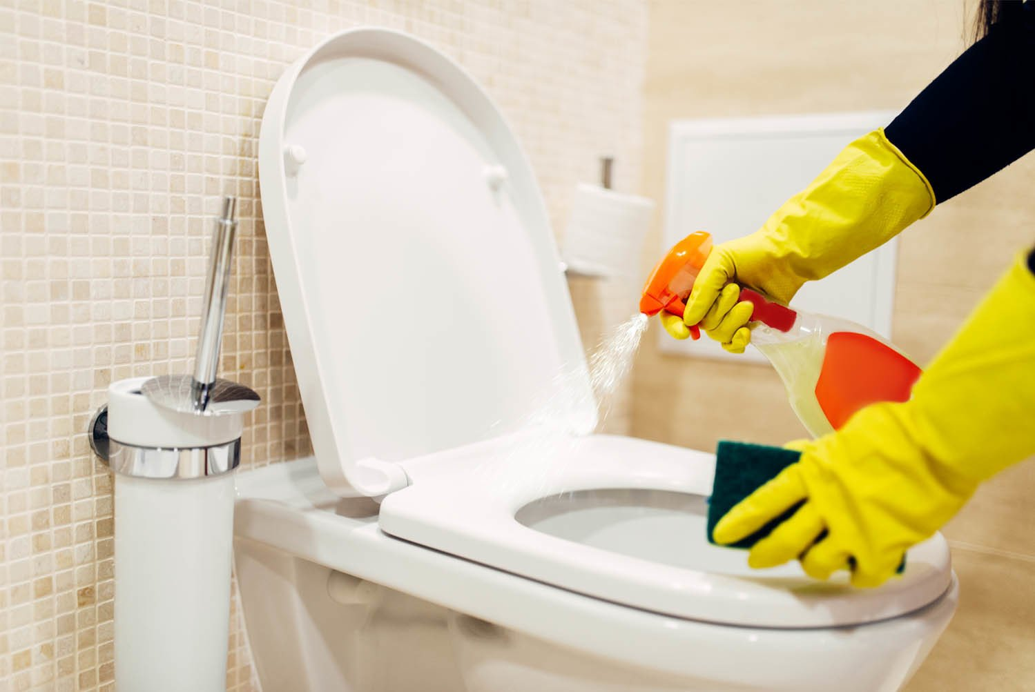 bathroom cleaning supplies bozeman montana