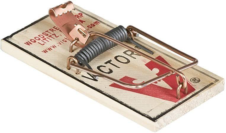 Mouse Trap for sale Bozeman Montana