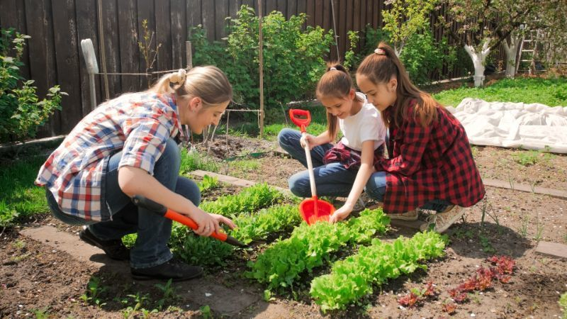 fruits and vegetables to grow in your home garden on Owenhouse ACE Hardware - Bozeman, Montana
