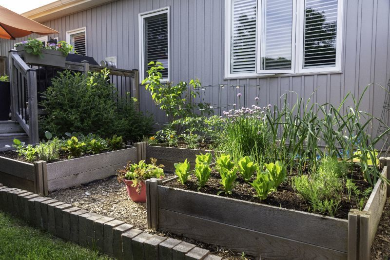 Backyard DIY gardens on Owenhouse Ace Hardware