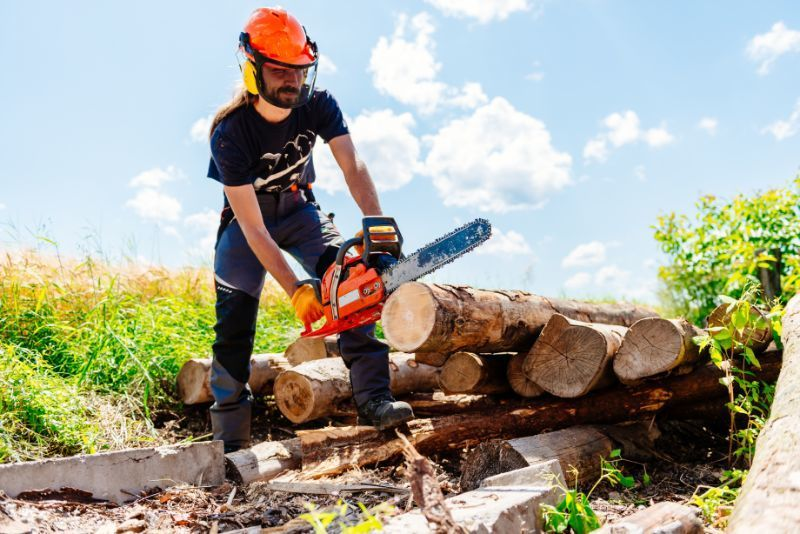 person cutting lumber with a chainsaw