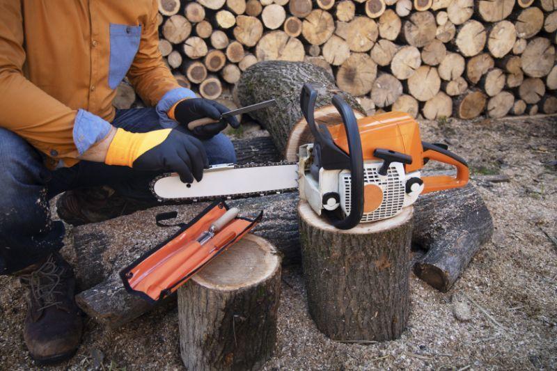 DIY chainsaw sharpening supplies - Bozeman, Montana