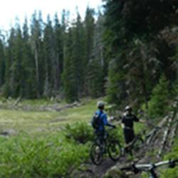 Blackmore Trail