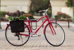 Owenhouse Cycling
