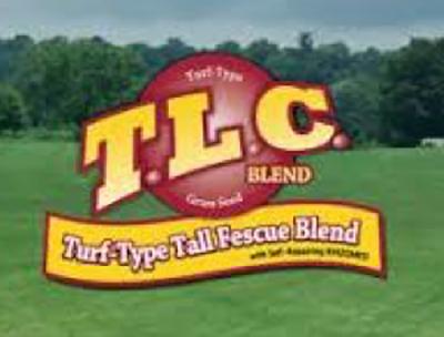 TLC thumbnail