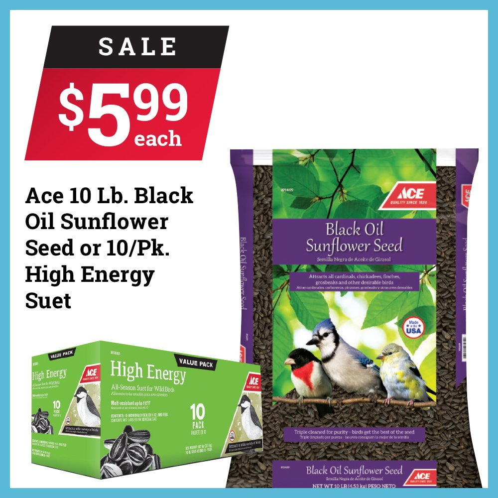 The birds 🐦 will be your friends forever when you feed them Ace brand bird food. 🐦 A 10-lb. bag of black oil sunflower seed and a 10/pk. of high-energy suet are on sale for $5.99 each. Sale ends September 30th. thumbnail