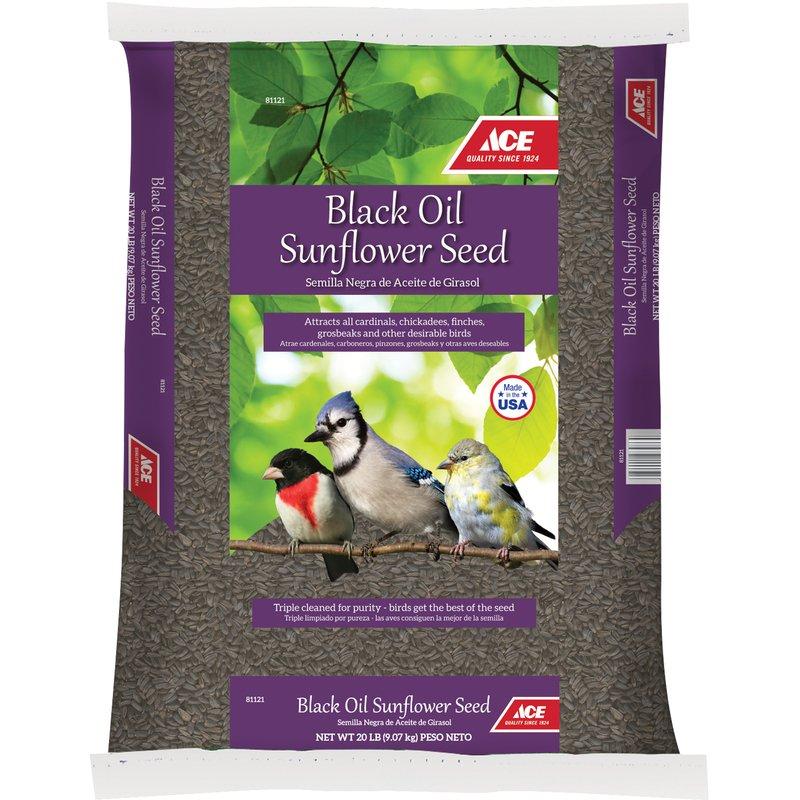 Black Oil Sunflower Seed thumbnail