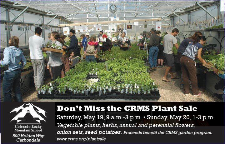 180510-plant-sale thumbnail