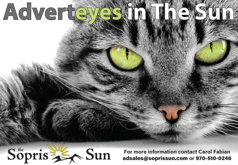 Advert-eyes-wild-qtr thumbnail