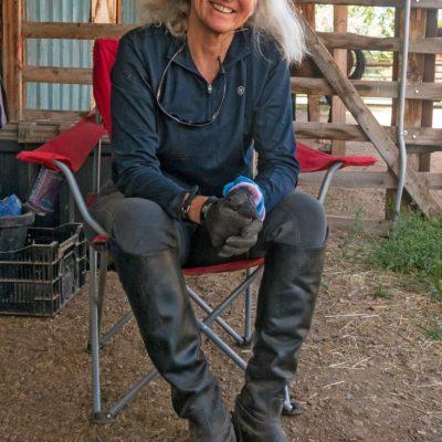 Linda Lafferty a shining light as an artist, equestrian thumbnail