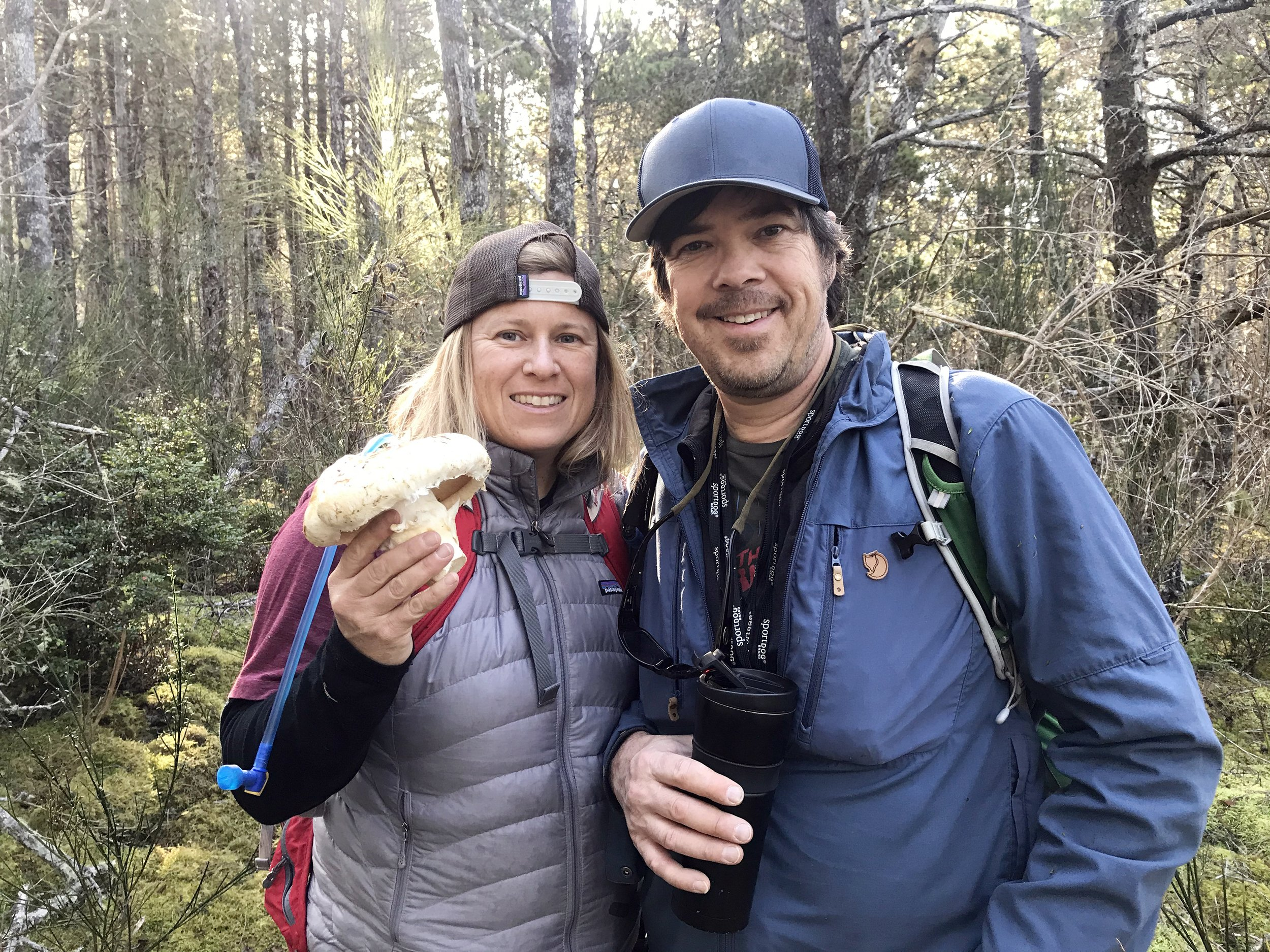Modern love, foraging and fungi thumbnail
