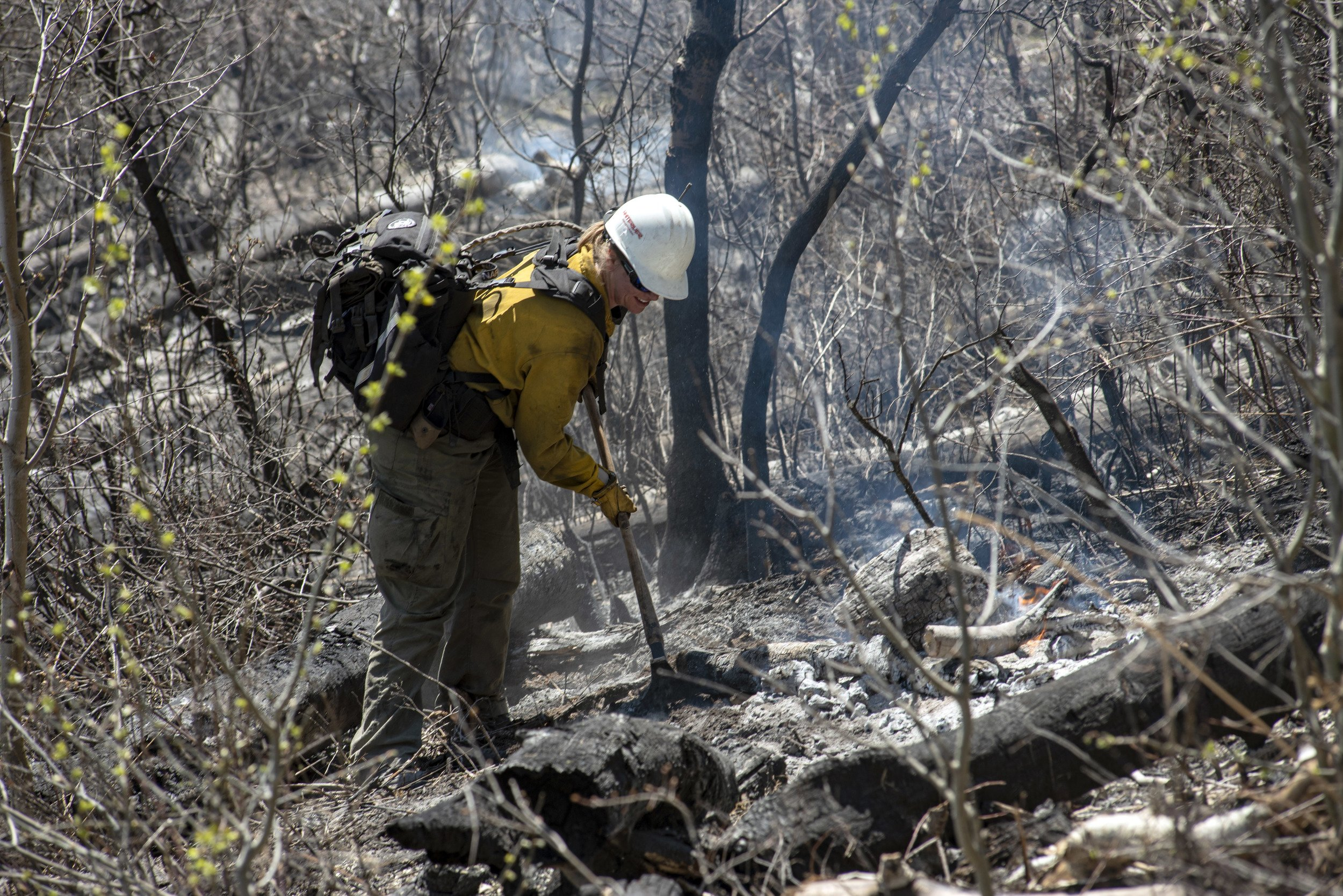 Planning for wildfire during COVID-19 thumbnail