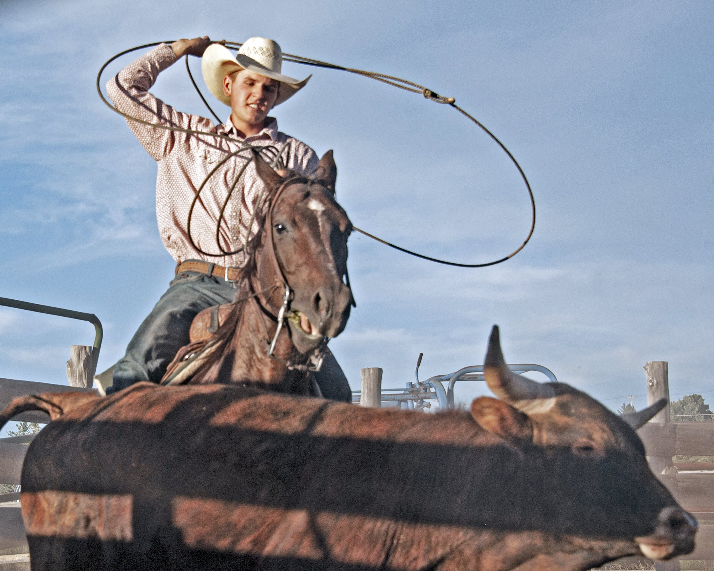 Local high school rodeo star heads to nationals thumbnail