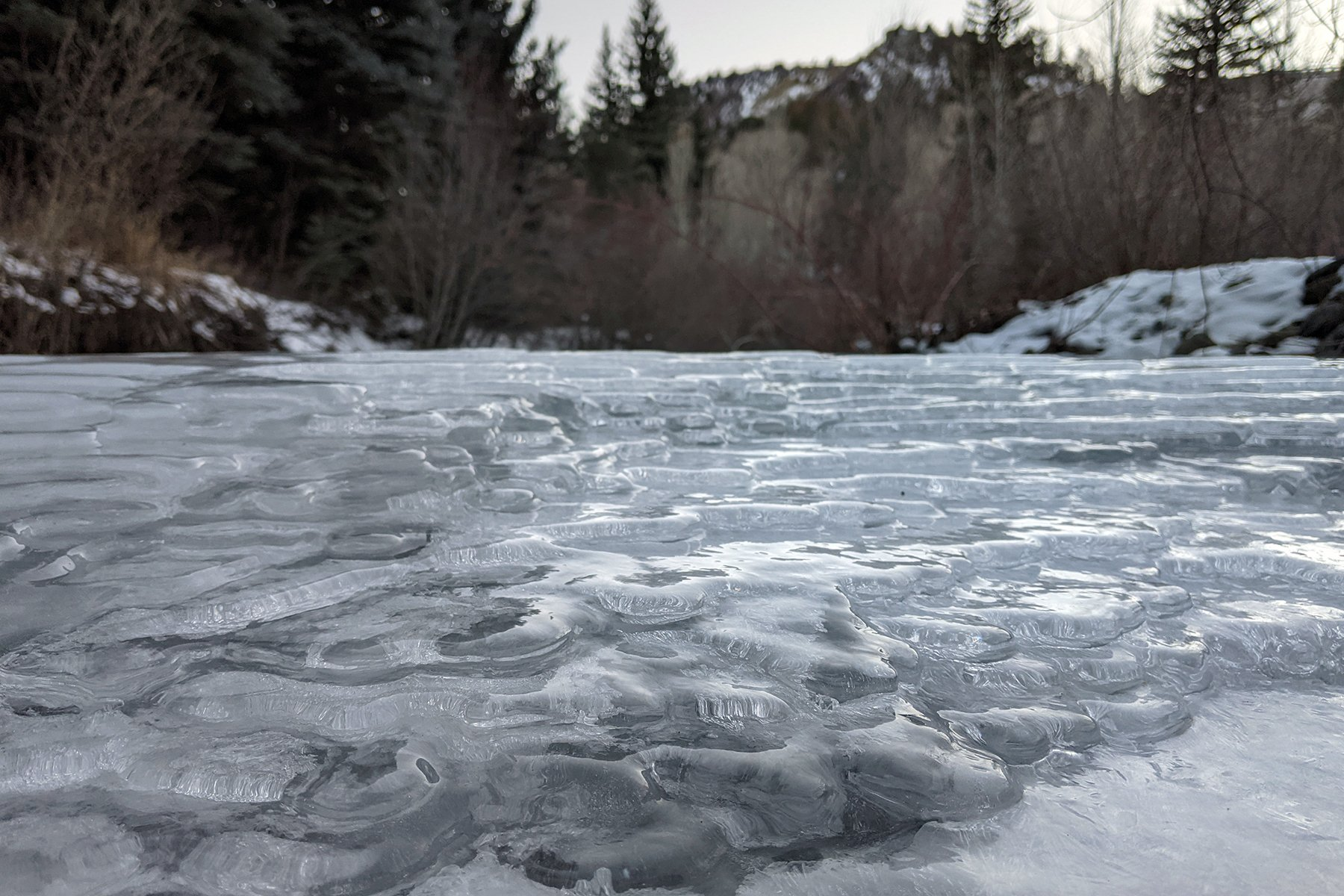 Frozen fractals While not suitable for skating, the ice covering Thompson Creek creates some lovely patterns. Photos by Shannon O'Gara Standiford