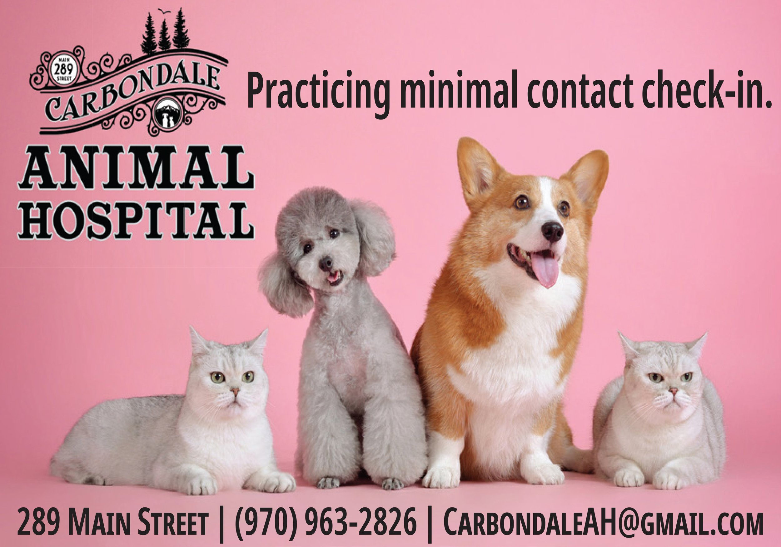 Carbondale Animal Hospital thumbnail