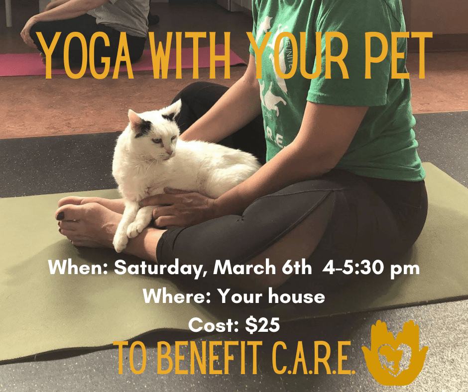 Yoga with Your Pet thumbnail