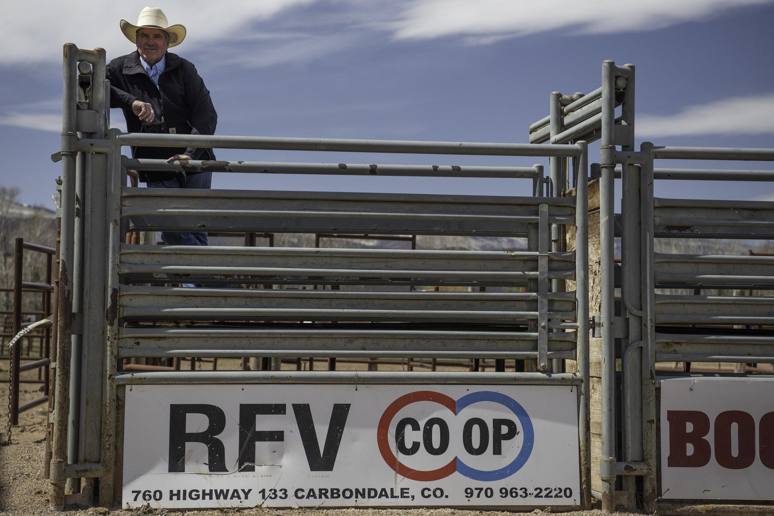 Let's rodeo! thumbnail
