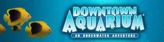 Denver Downtown Aquarium Virtual Meet and Greet thumbnail