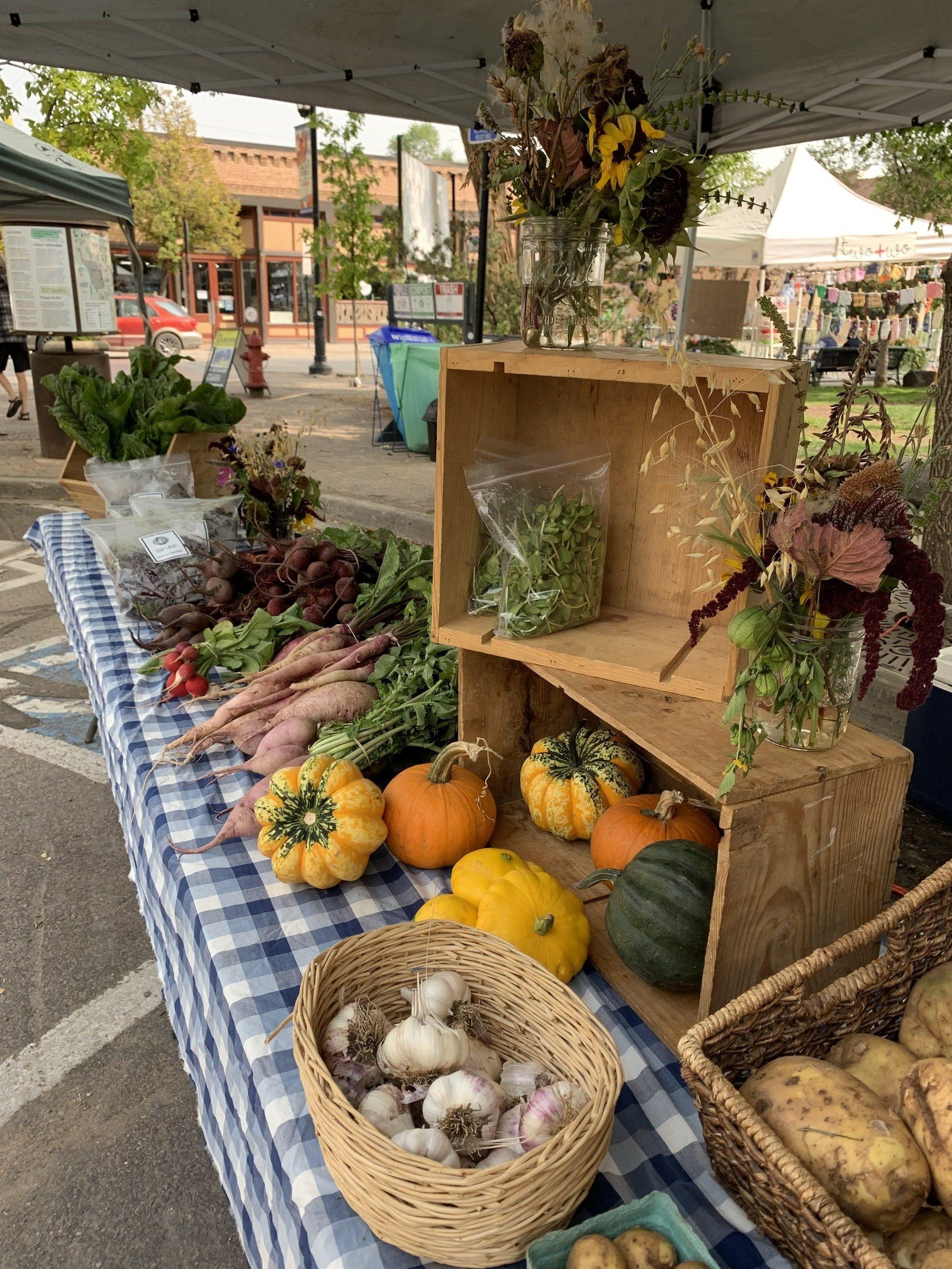 Carbondale Farmers' Market: a Hump Day ritual! thumbnail