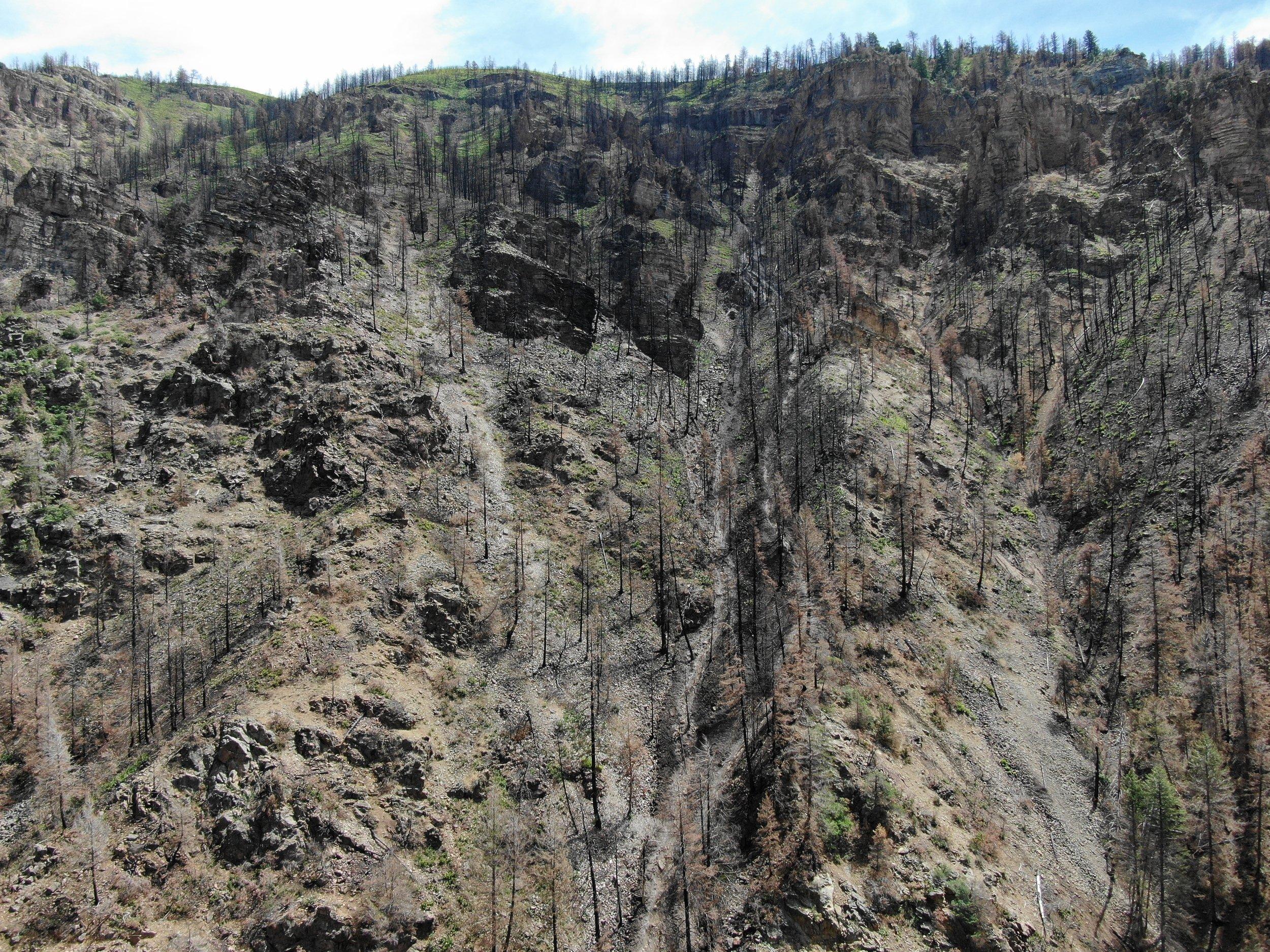 Mudslides impact water quality thumbnail