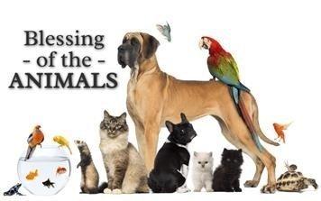 Aspen Chapel's Pet Church. Blessing of the Animals. thumbnail